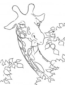 coloring page Giraffe (31)