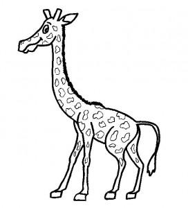 kleurplaat Giraffe (32)