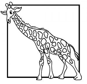 coloring page Giraffe (4)