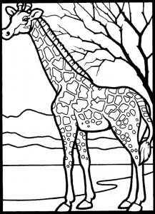 kleurplaat Giraffe (5)