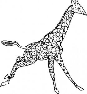kleurplaat Giraffe (6)