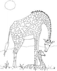 kleurplaat Giraffe met jong