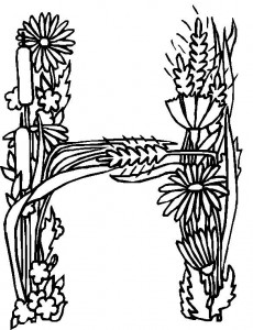 coloring page H (1)