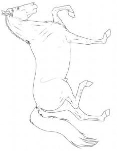 раскраска хакни лошадь