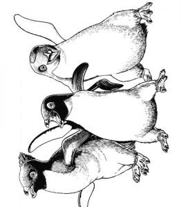 kleurplaat Happy Feet (7)