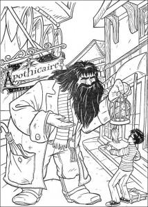 målarbok Harry Potter (31)