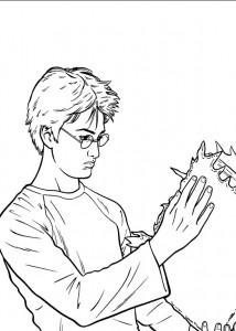 kleurplaat Harry Potter (66)