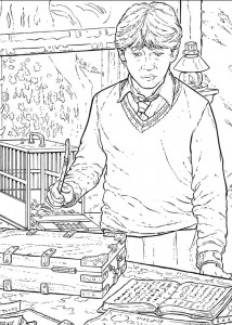 coloring page Harry Potter (80)