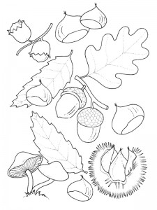 coloring page Autumn (13)