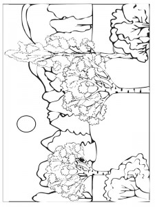coloring page Autumn (3)