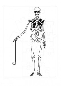 coloring page The skeleton (1)