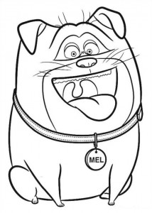coloring page Pet secrets (Secret life of Pets) (7)