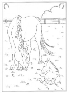 coloring page In the meadow with foal