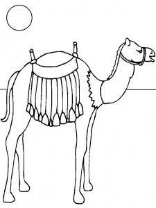 kleurplaat Kamelen (8)