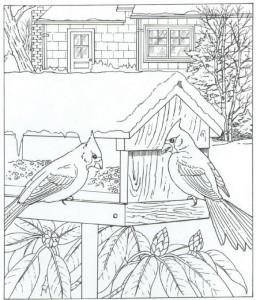 kardinal fågel målarbok