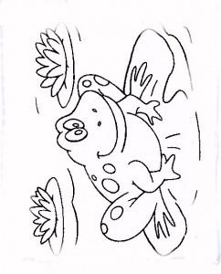 kleurplaat Kikkers (2)