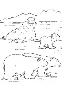 coloring page Little polar bear (1)