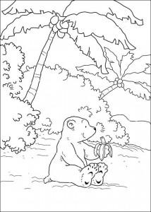 раскраска Маленький белый медведь ест банан (1)