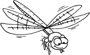 kleurplaat Libelle (1)