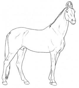 målarbok marwari