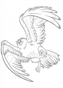 coloring page maui becomes bird