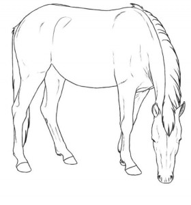 coloring page mustang mare