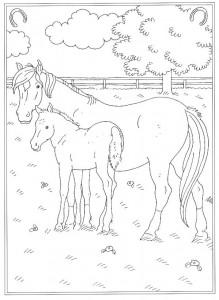 pagina da colorare Alla scuola di equitazione (2)