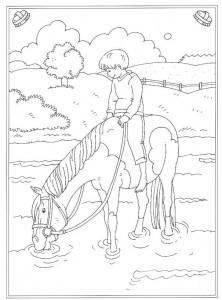 kleurplaat Paard in het water