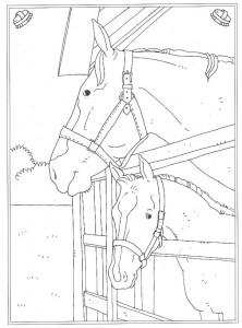 kleurplaat Paard op stal