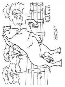 målarbok Hästar (12)