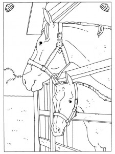 kleurplaat Paarden (17)