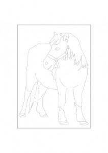 kleurplaat Paarden (18)