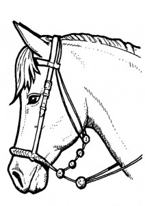 coloring page Horses (21)