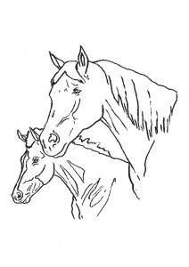coloring page Horses (22)