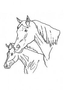 målarbok Hästar (22)