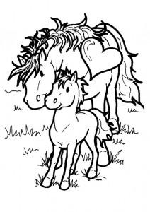 kleurplaat Paarden (24)