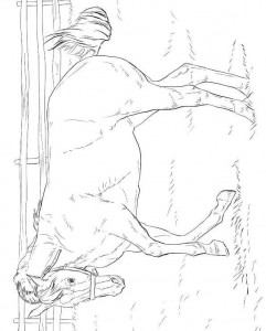 coloring page Horses (5)