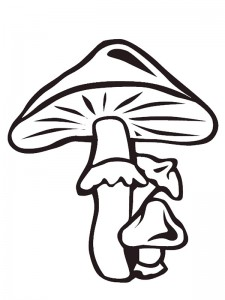 coloring page Mushrooms (2)