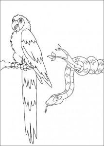 kleurplaat Papagaai en slang