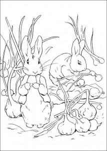 coloring page Pieter Konijn (13)