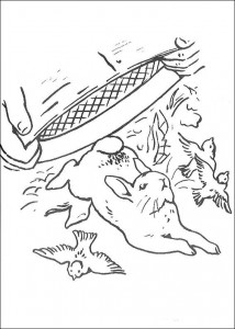 kleurplaat Pieter Konijn (3)
