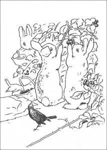 coloring page Pieter Konijn (9)