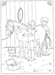 kleurplaat Poetsen van je paard
