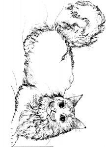 målarbok Katter och katter (22)