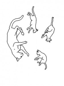 målarbok Katter och katter (25)