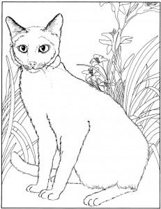 kleurplaat Poezen en katten (38)