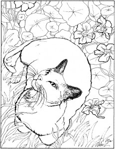 kleurplaat Poezen en katten (39)