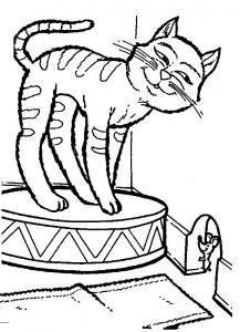 kleurplaat Poezen en katten (41)