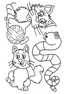 kleurplaat Poezen en katten (47)