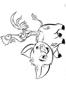 coloring page pua heihei (3)